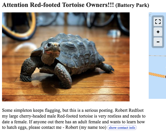 Attention Red-footed Tortoise Owners!!! Some simpleton keeps flagging, but this is a serious posting. Robert Redfoot my large cherry-headed male Red-footed tortoise is very restless and needs to date a female. If anyone out there has an adult female and wants to learn how to hatch eggs, please contact me - Robert (my name too)