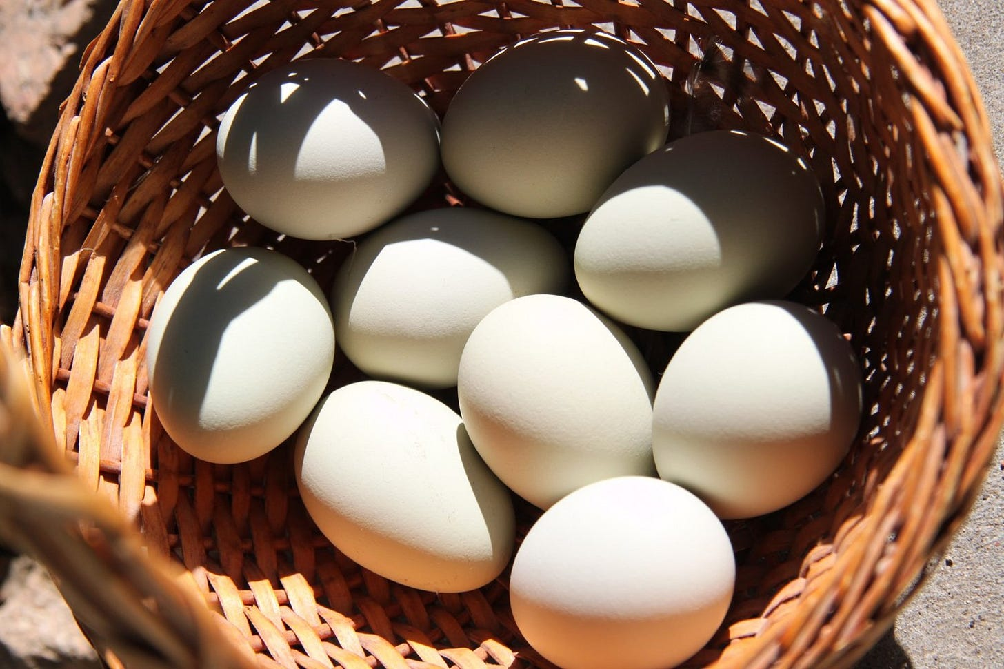 Putting all your eggs in one basket | Amerasia Consulting