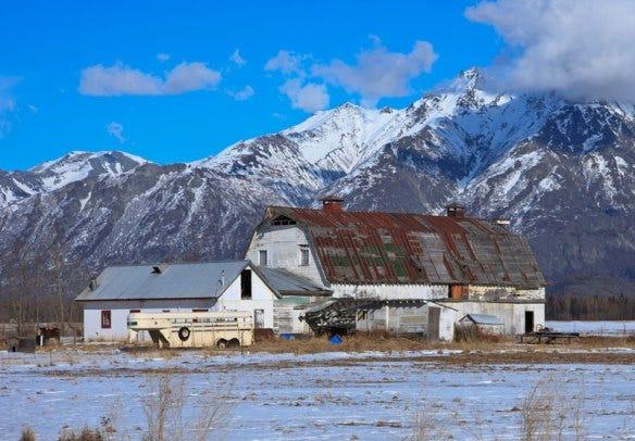 Parks/Archer barn. Photo by Stewart Amgwert, Wasilla.