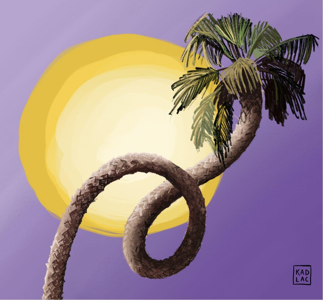 Palm Trees through the eyes of Salvador Dali