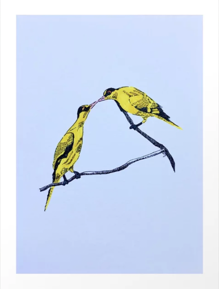Commitment | line illustration Black-naped Oriole are usually seen in pairs, and often together for life! Inspired by the knowledge, I hand-drawn the pair of birds with black fine liner pen and coloured brush pen. It also reminds me of the wedding vow.…till death us do part.