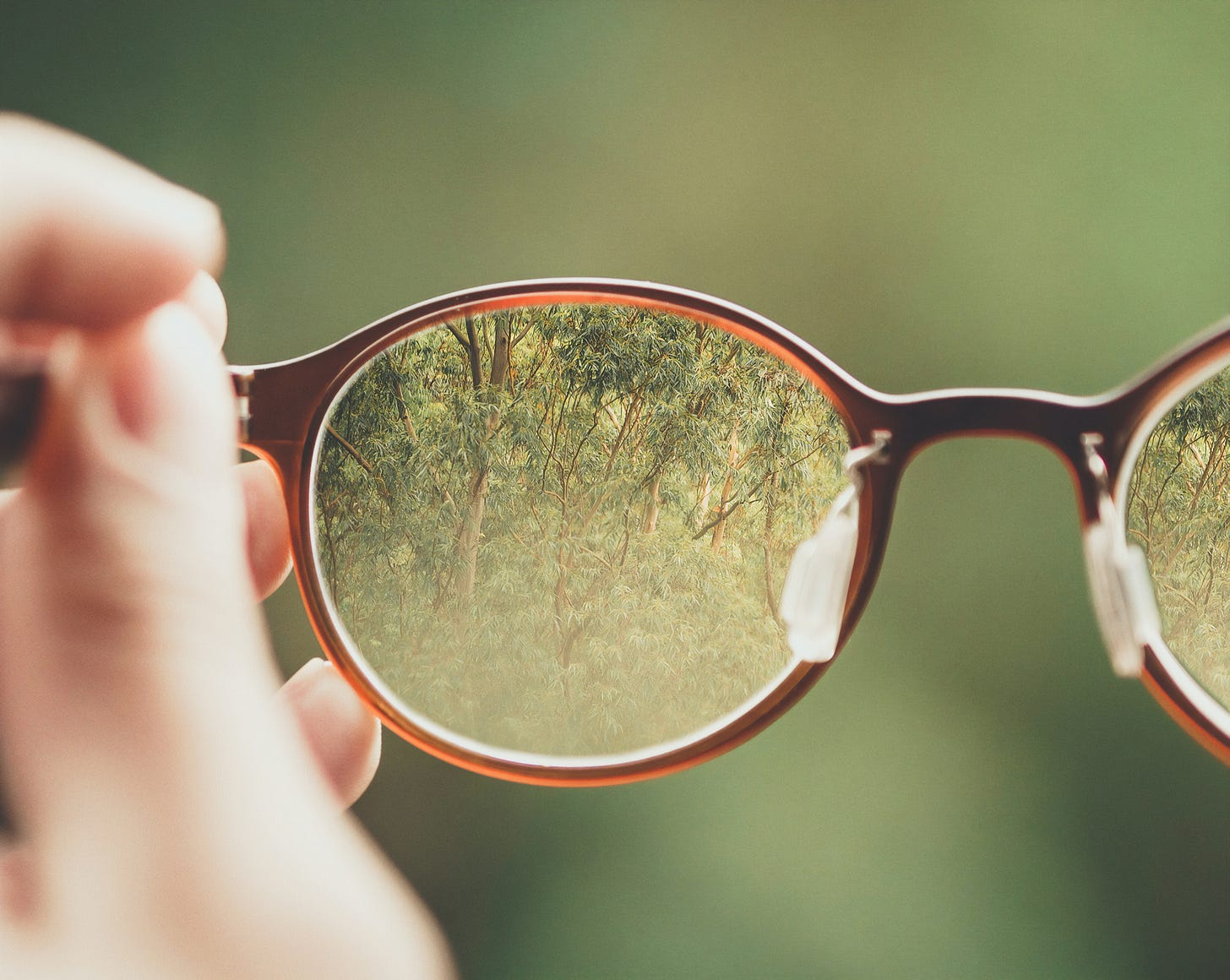 Photo of trees visible through a pair of glasses. Bud Helisson / Unsplash