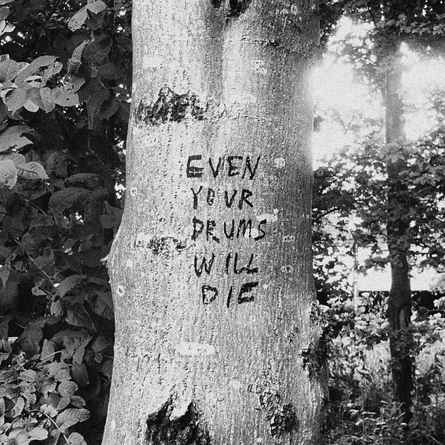 Richard Swift - Even Your Drums Will Die: Live at Pendarvis Farm 2011 - LP  – Rough Trade