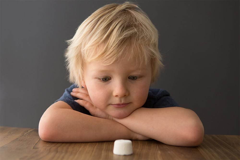 Marshmallow Test Experiment Picture