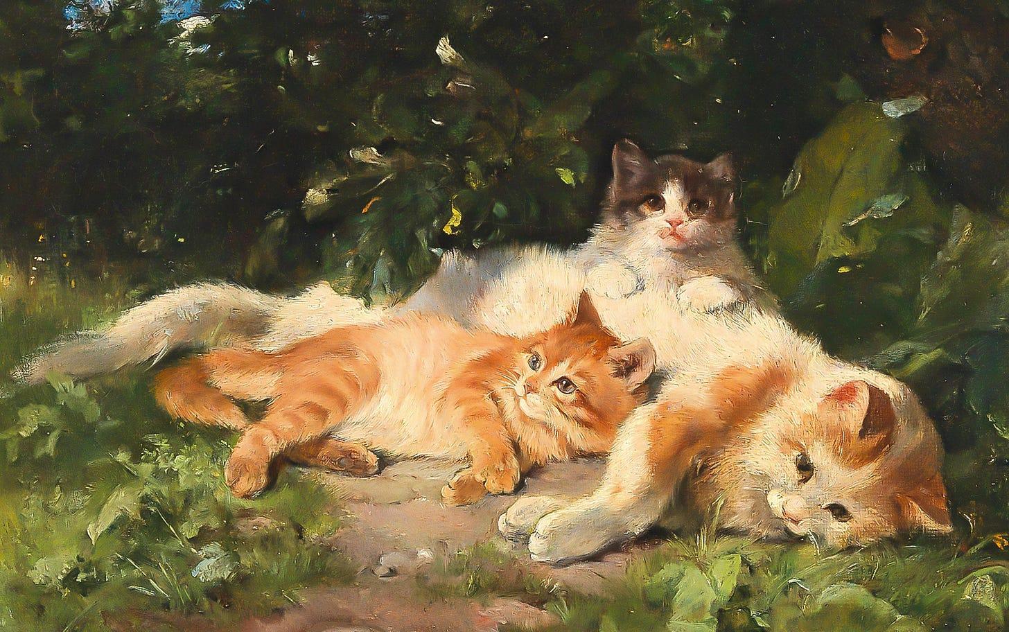 forest kittens