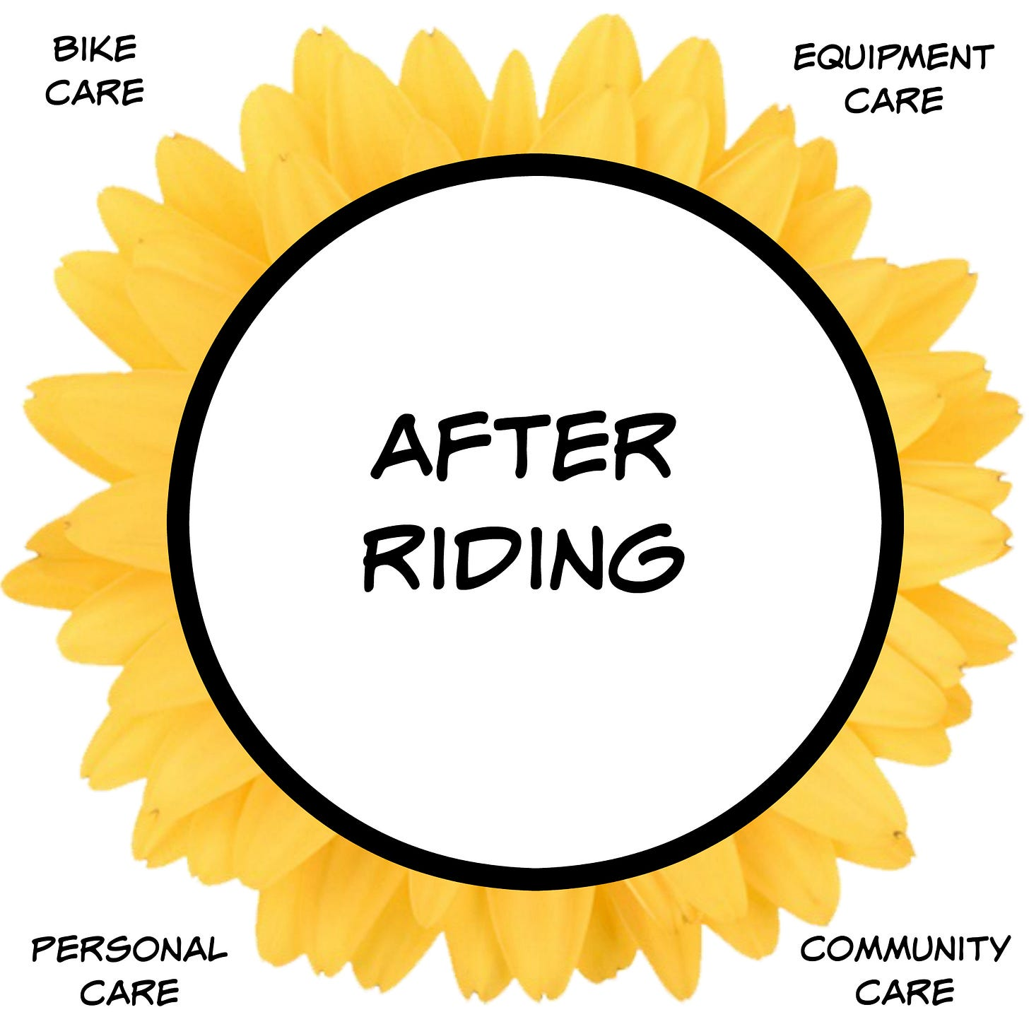 After Riding considerations