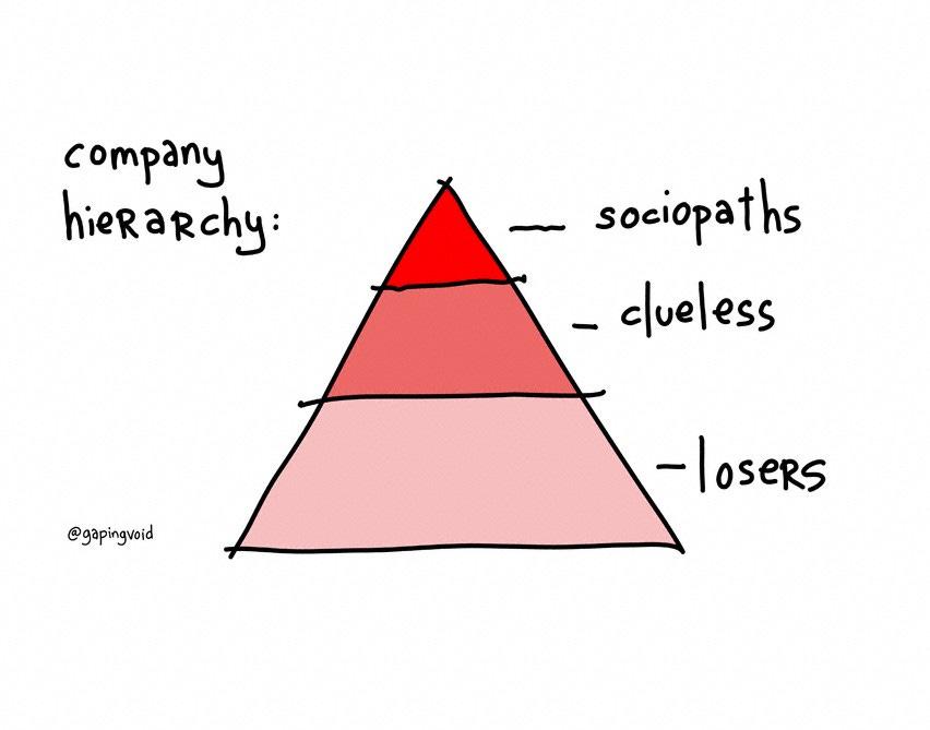 A hierarquia das organizações segundo Rao
