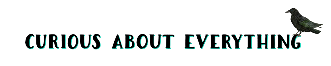 Curious About Everything, a newsletter by Jodi Ettenberg