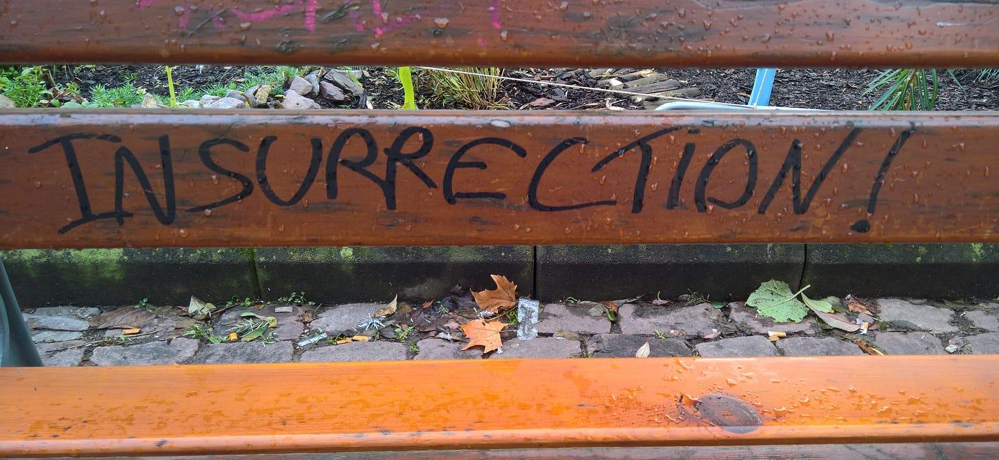 """Insurrection"" written on a fence."