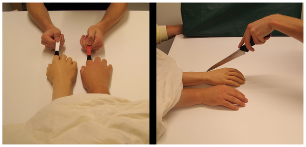 Two images of the experimental setup from the study showing the limb and the fake limb underneath a sheet getting prodded by brushes in the first photo and a knife in the second.
