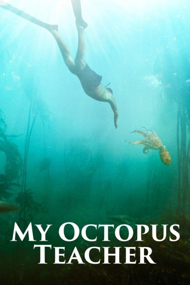 Sedeljka.com My Octopus Teacher 2020 / Filmovi sa prevodom