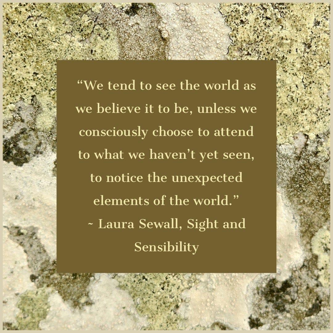 Sight and Sensibility
