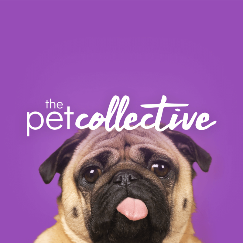 On Now - The Pet Collective | XUMO