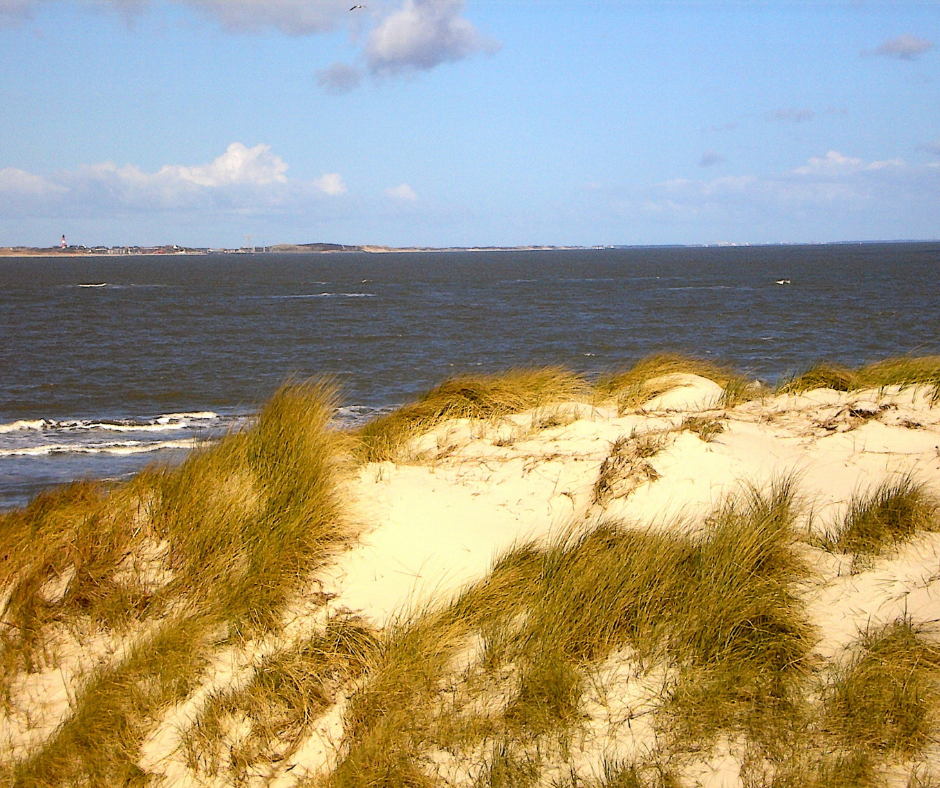 Sand dunes and the sea