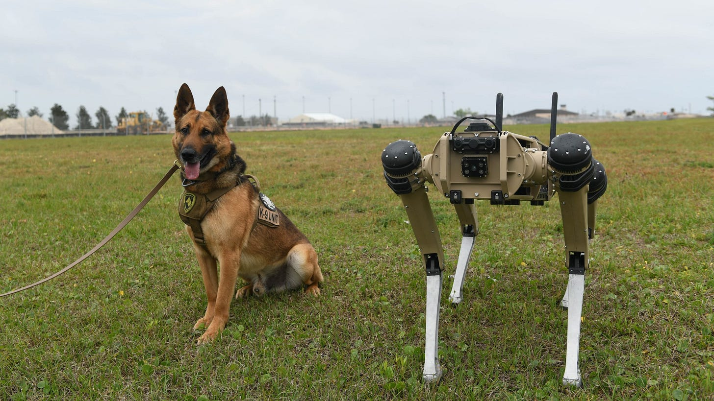 A live dog sits next to a robot dog