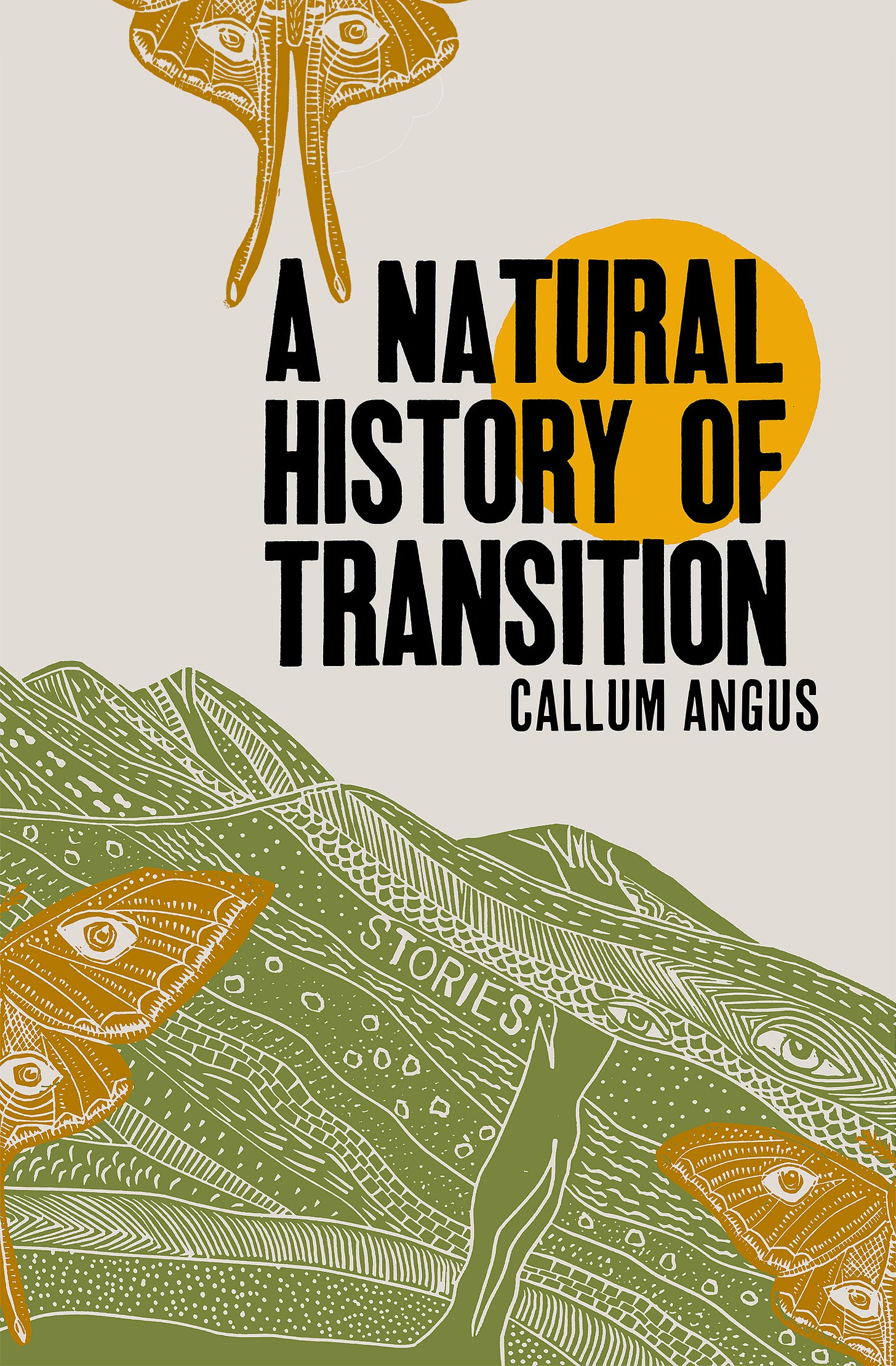 A Natural History of Transition PAPERBACK - Callum Angus ...