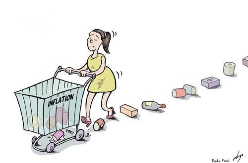 inflation cartoon | Cartoon, Economics