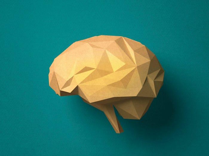 oragami brain.jpg