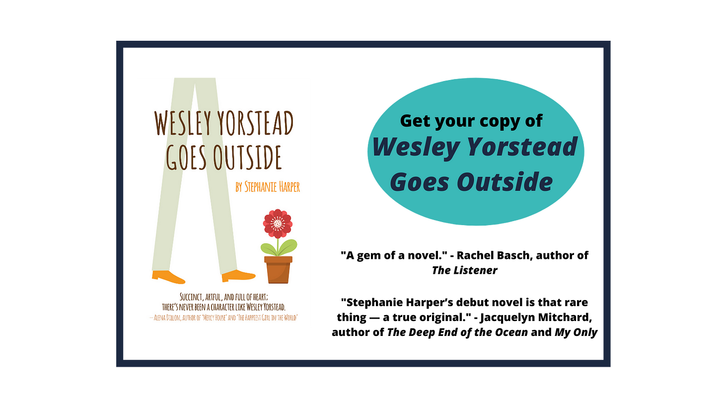 Get your copy of Wesley Yorstead Goes Outside