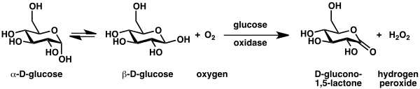 Glucose oxidase - Wikipedia