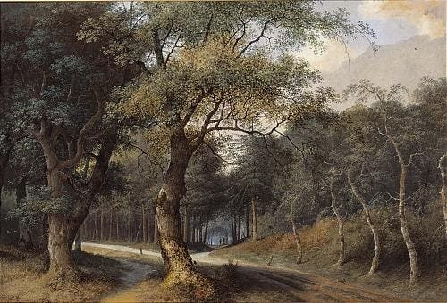 A path through a forest by Joseph Augustus Knip on artnet