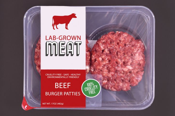 Illustration of cultured beef