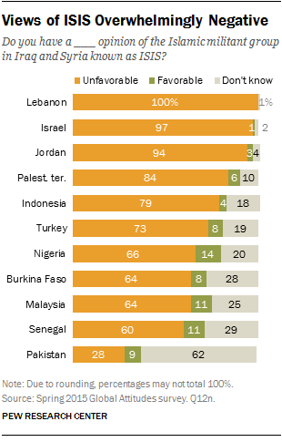 Views of ISIS Overwhelmingly Negative