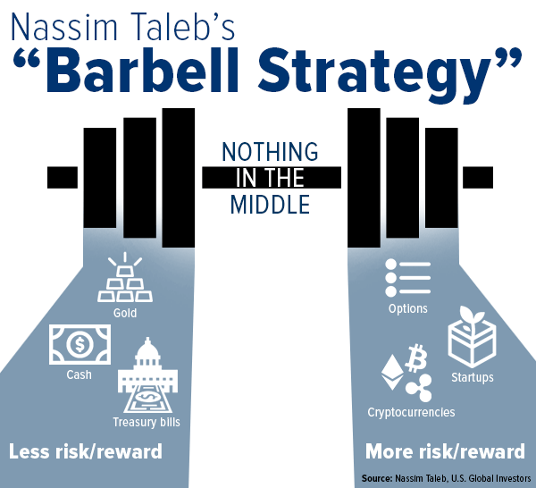 Nassim Taleb's Barbell investment strategy – Theory of Constraints