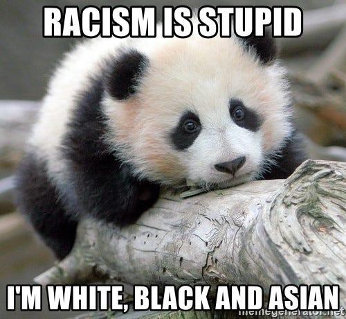 sad panda - racism is stupid I'm white, black and Asian