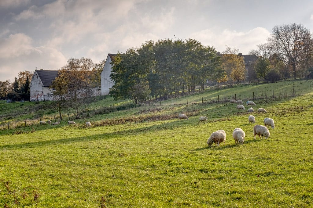 """""""Pastoral view of Colen Abbey"""" by enneafive is licensed under CC BY 2.0"""