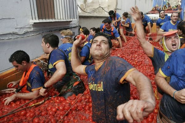 Image result for throwing tomatoes