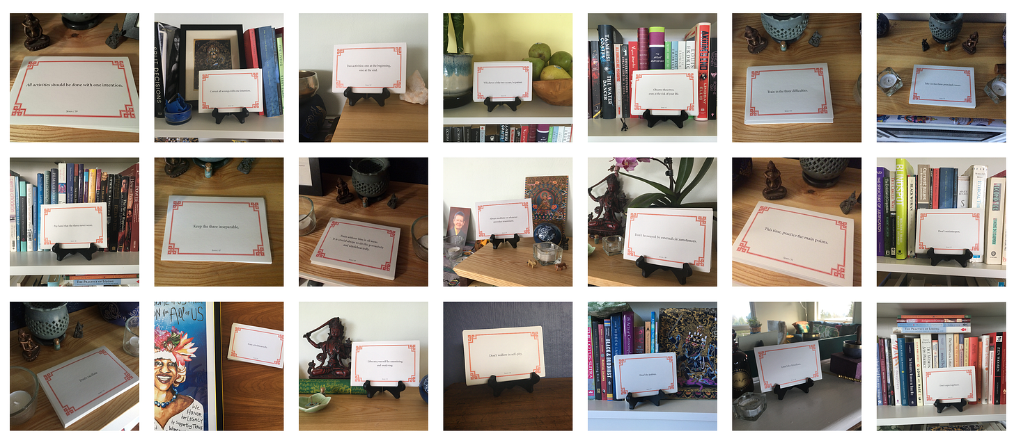 A collage of 21 photos of lojong slogan cards on various surfaces