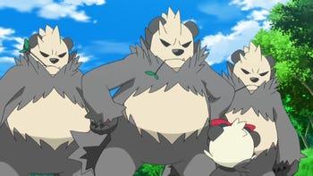 Pangoro (XY071)   Pokémon Wiki   FANDOM powered by Wikia