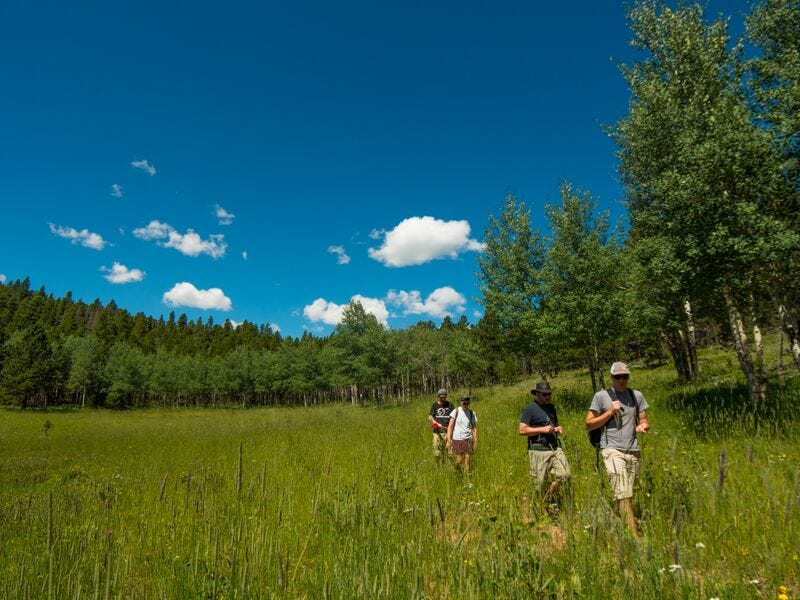 Our sampling crew in the foothills of the Rocky Mountains