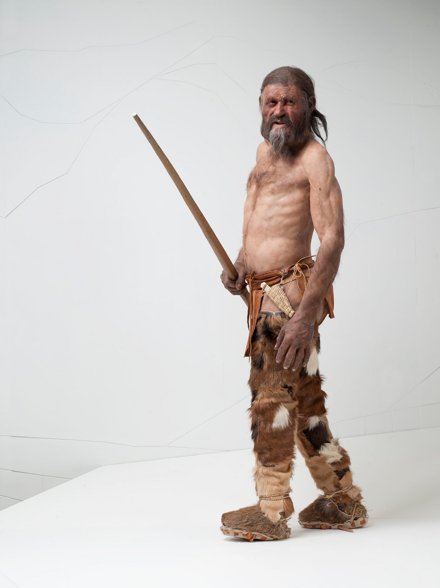 The Faces of Otzi: Imagining the Dead | Archaeology and Material Culture
