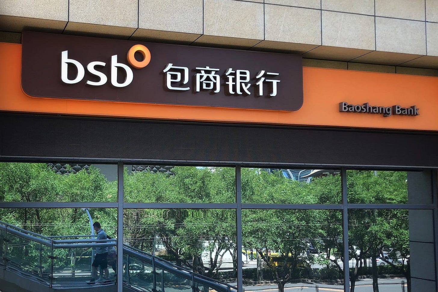 China's financial risk and lessons from the Baoshang Bank collapse