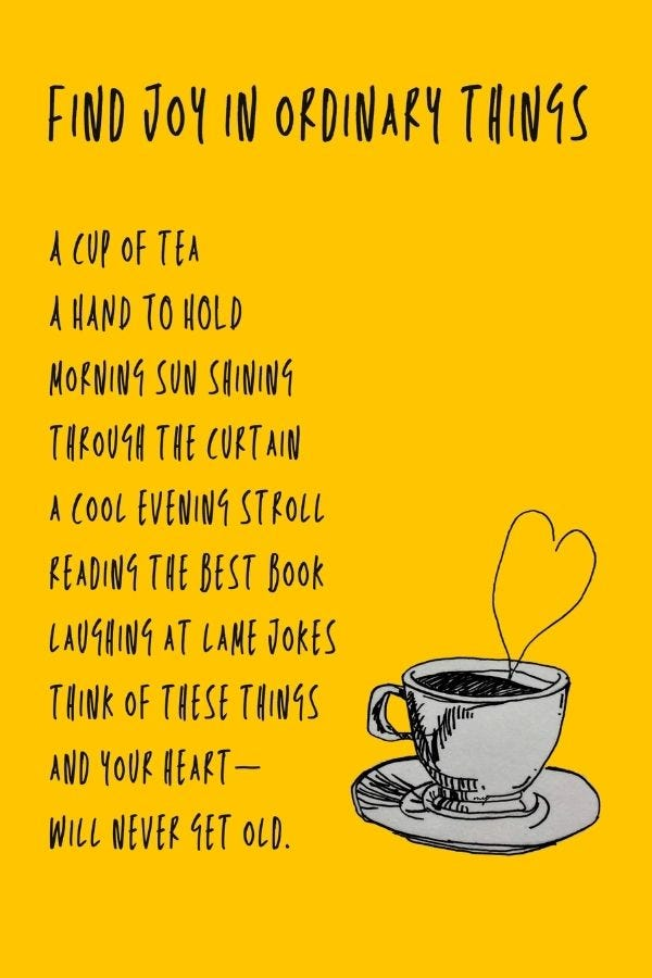 Find Joy In Ordinary Things 