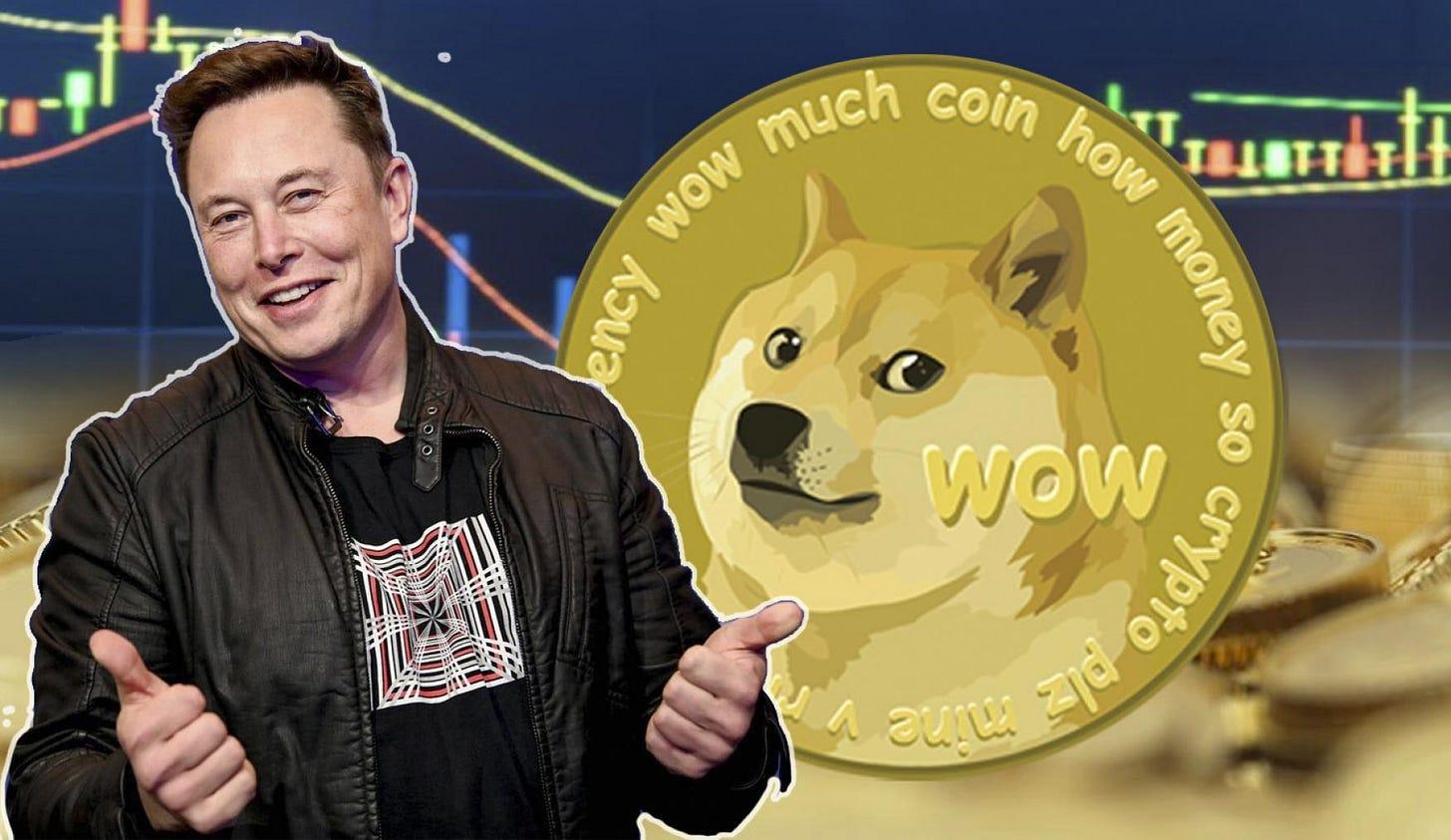 "Musk continúa criticando el bitcoin y ve al dogecoin ""prometedor""    Business Insider España"