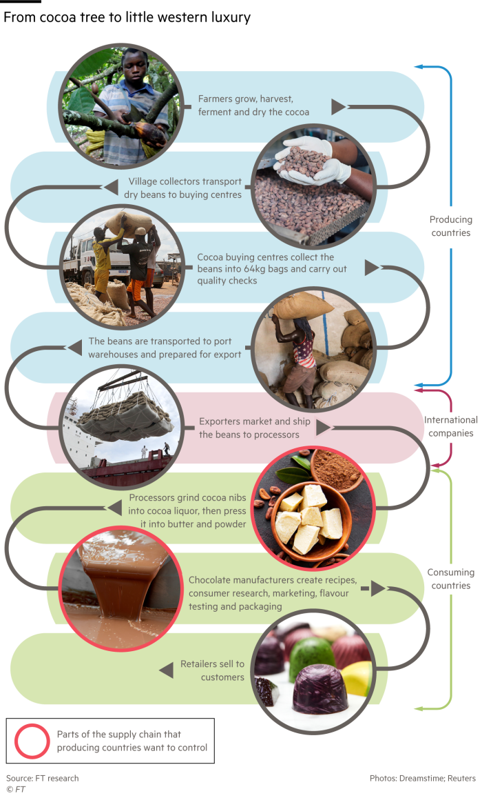 Chart showing the stages of production of cocoa