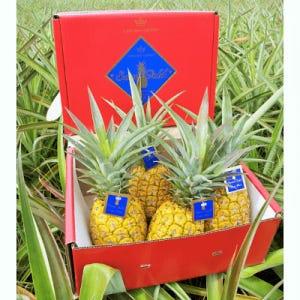 Sweet Gold Pineapple 4-Pack (Source: Hawaiian Crown)