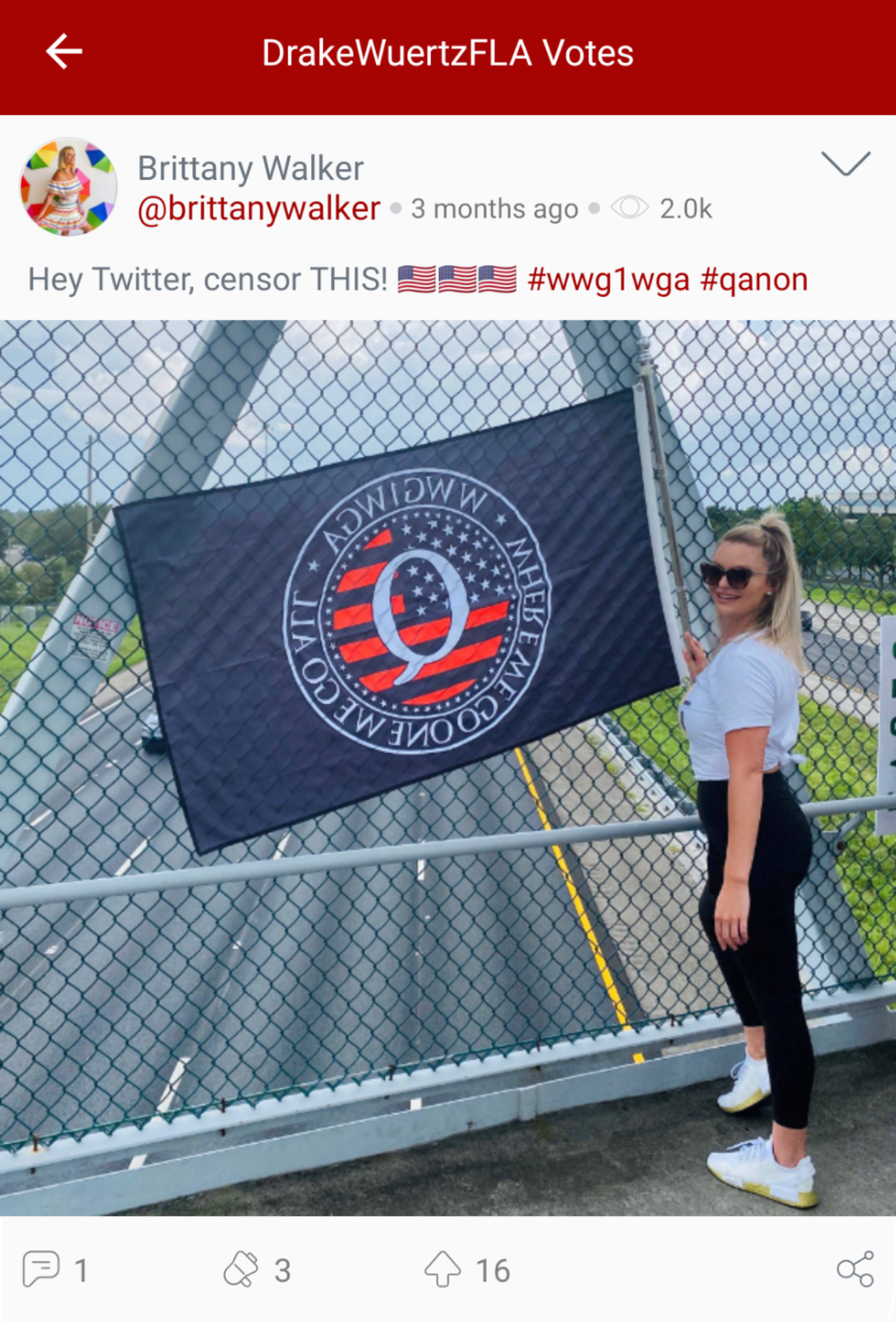 "@DrakeWuertzFLA ""votes"" a Parler post from Brittany Walker displaying a (backwards) QAnon flag, which also includes the hashtags ""#qanon"" and ""#wweg1wga,"" the latter standing for QAnon catchphrase ""Where We Go One, We Go All."" (Image: Parler screenshot.)"