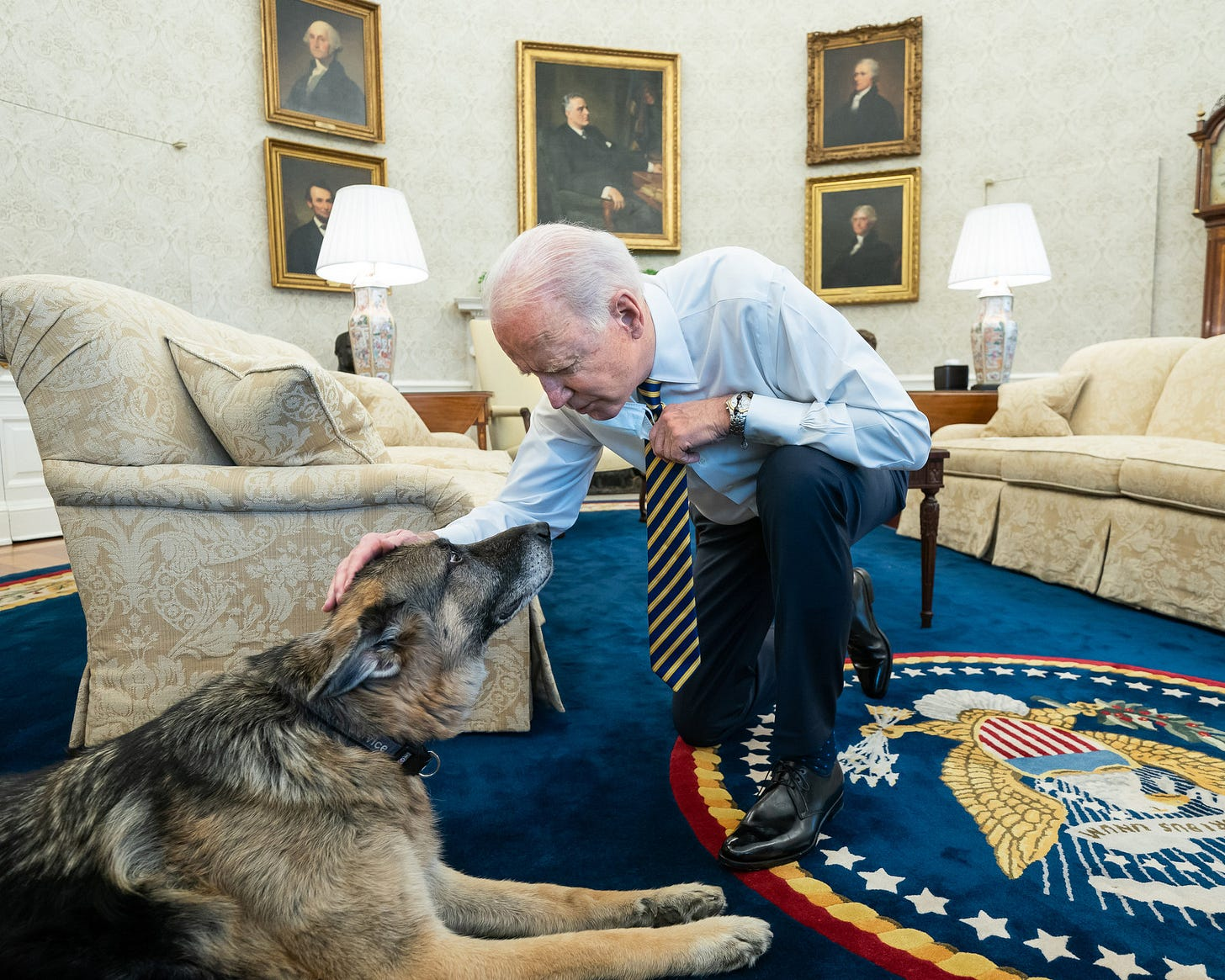 Preisdent Biden with his dog Major in the Oval Office