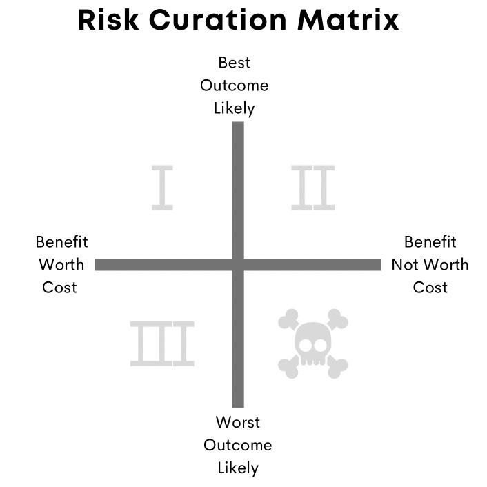 Risk curation matrix