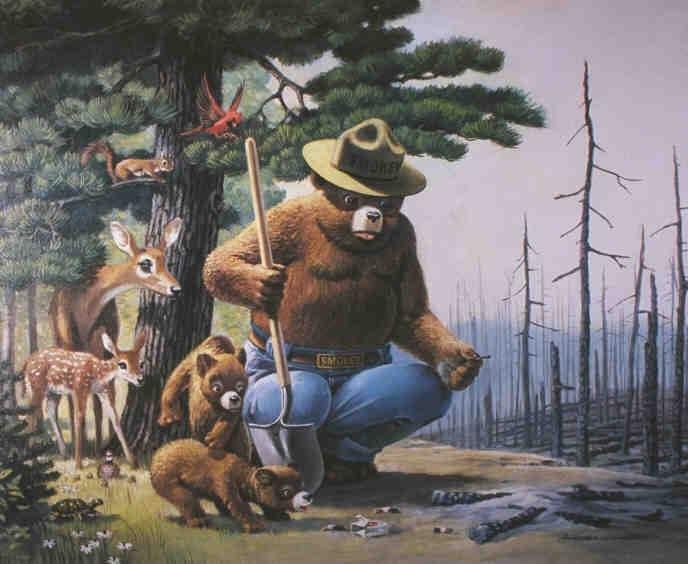News Media: Smokey the Bear Sutra: Smokey Bear image, picture