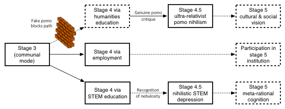 Diagram of adult developmental stage transitions