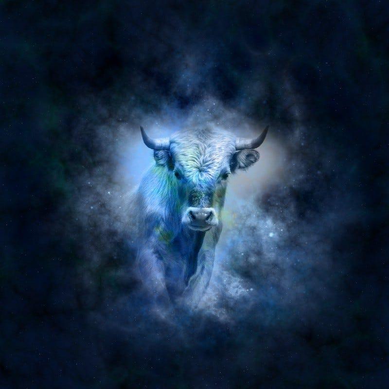 Tough Love Astrology—Taurus