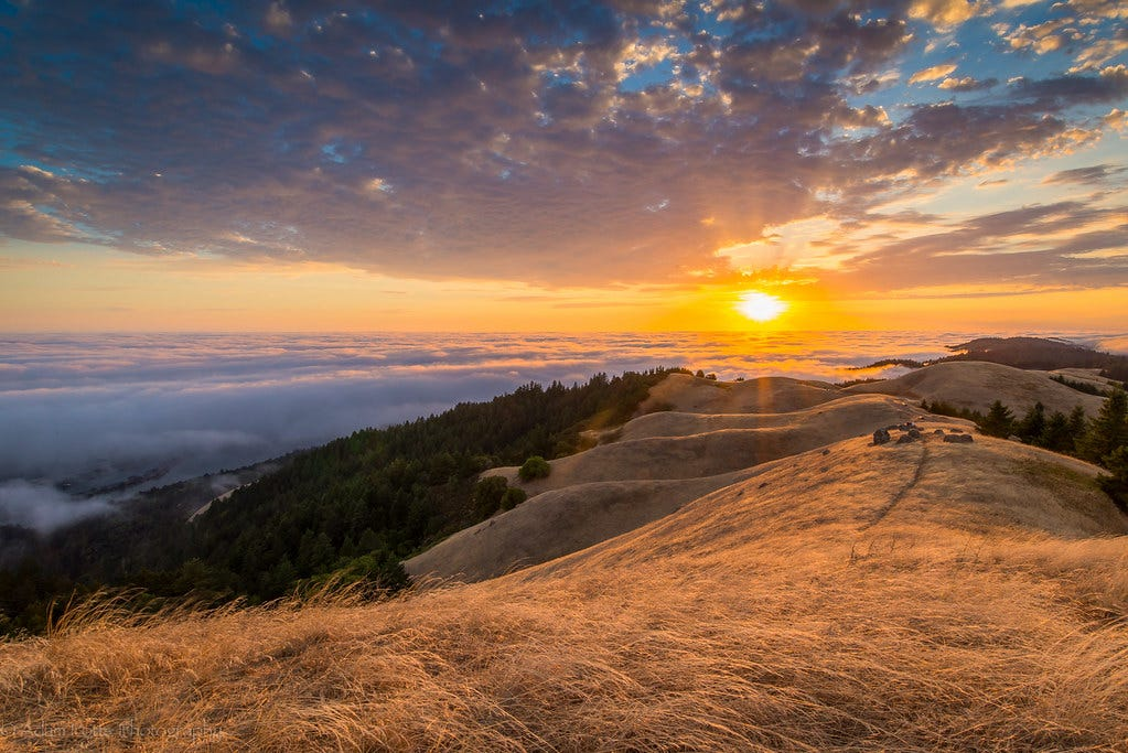 Image result for sunset mt tamalpais