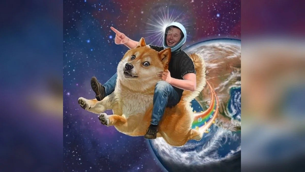 Dogecoin Rides Cryptocurrency Wave to Jump 160 Percent. Elon Musk Eyes  Vindication   Technology News