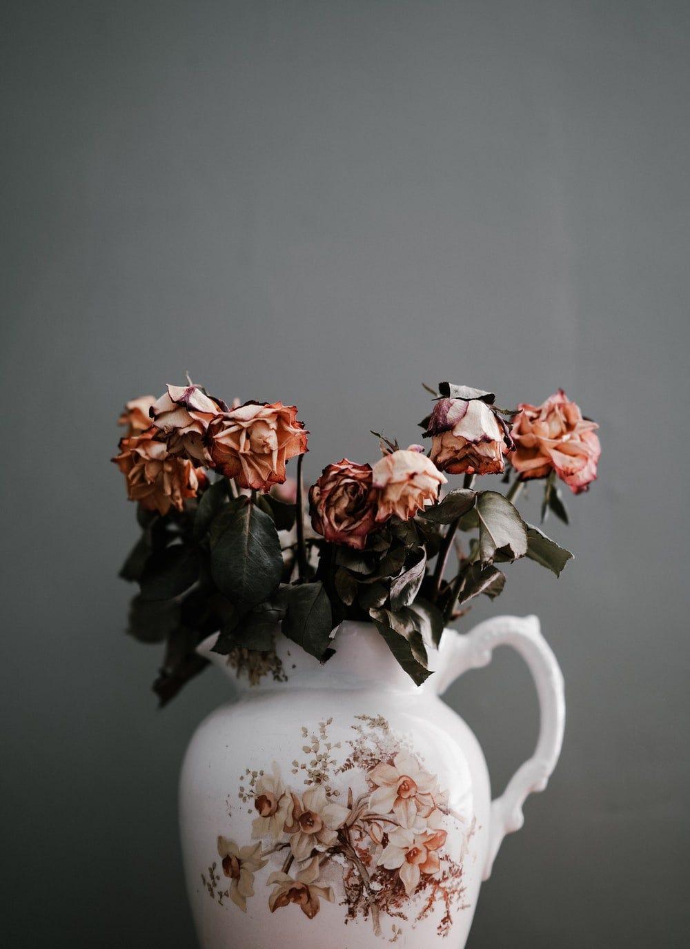 pink petaled flowers in vase