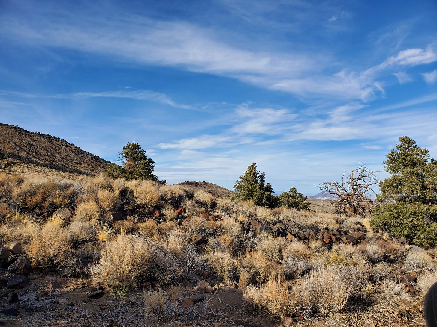Landscape shot showing sage brush in the foreground and blue skies and white clouds in the distance.